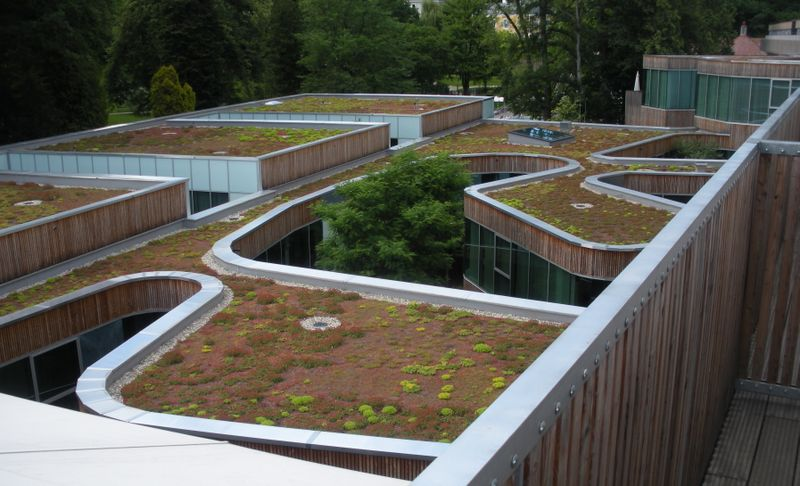 Kurhaus Roof