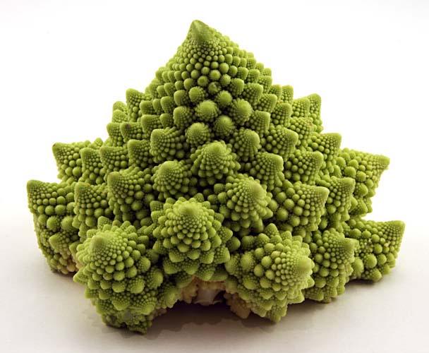 Romanesco-romanescu-cauliflower-califlower-blumenkohl-blumenkol-fraktal-fractal-art